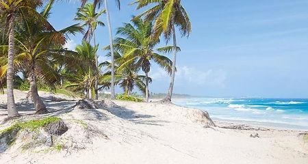 Os melhores passeios de Punta Cana