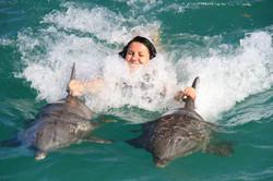 tour golfinhos punta cana