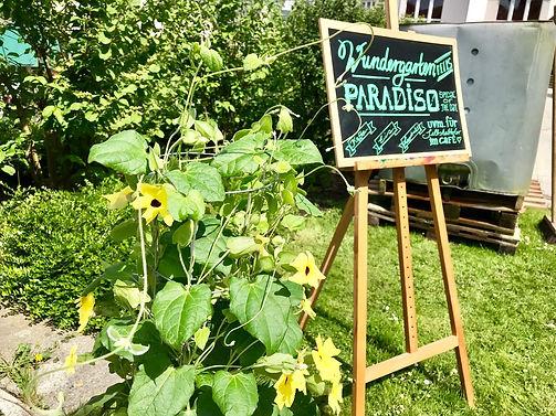 Wundergarten 9.jpg