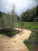 Begehbares Moor.jpg