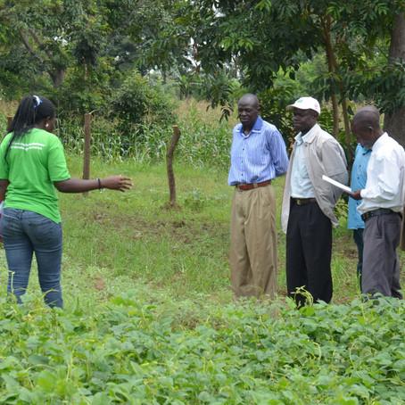 TIPs Workshops in Kapchorwa, Uganda / Teso South, Kenya
