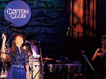 """2020/8/8 & 8/9""""小比類巻かほる35th Anniversary Live"""""""