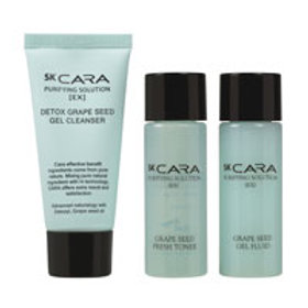 SK CARA PURIFYING SOLUTION