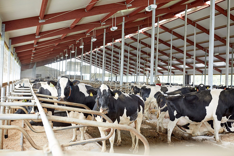 Équipements agricoles neufs et usagés