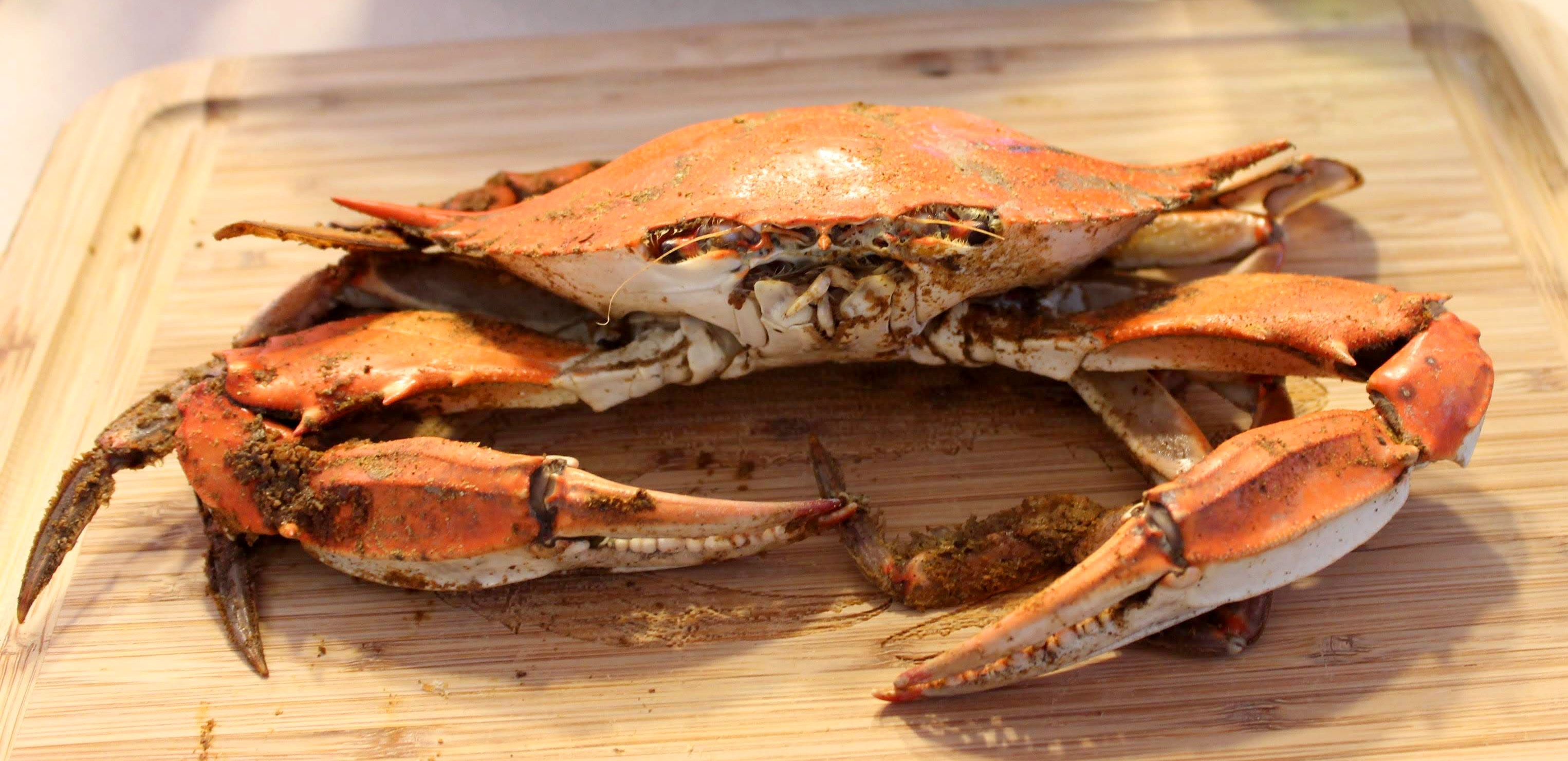 steamed-crab-4089340.jpg
