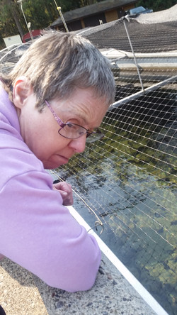 Chilliwack River Fish Hatchery