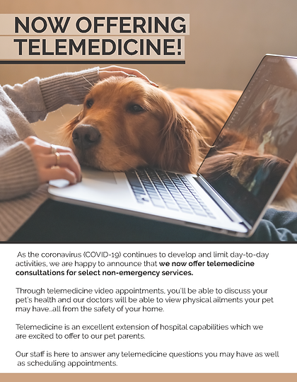 Telemedicine Flyer_Canine.png