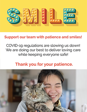 Smile Flyers-03.png