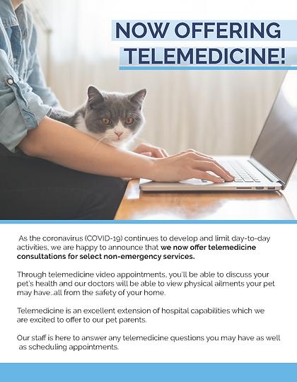 Telemedicine Flyer_Feline.png