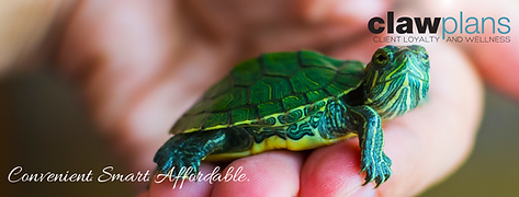 Reptile CLAW_FB COVER.png