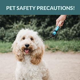 Dog Safety Curbside Facebook post 7.28.2