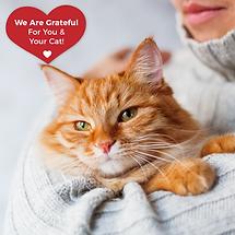 Grateful FB post ginger cat grateful to