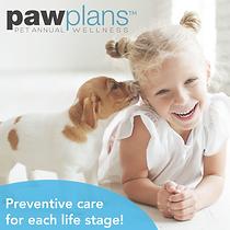 Paw Plan Web Tool Kit tm_Fb post dog-10.
