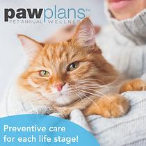 Paw Plan Web Tool Kit tm_Fb post cat-18.