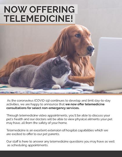 Telemedicine Flyer_1.png