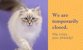 Temp Closure Web_Ally copy 11.png