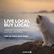 Local_Cat_Evergreen_FBPost_v3.png