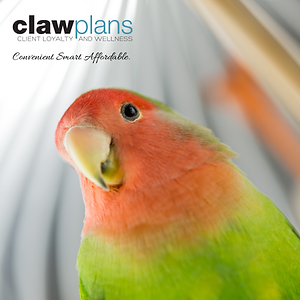 Avian CLAW_FB POST-05.png