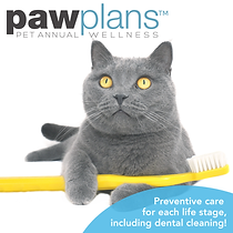Paw Plan Web Tool Kit tm_Fb post dentist