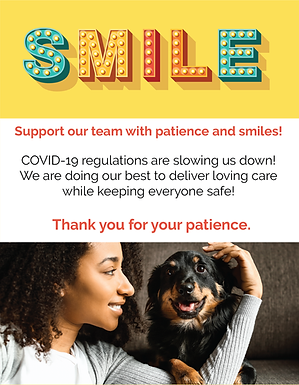 Smile Flyers-02.png