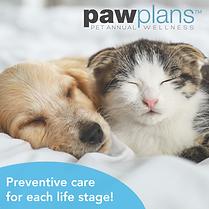 Paw Plan Web Tool Kit tm_Fb post dog cat