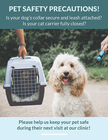 Pet Safety Curbside Flyers 7.28.2020_Pag
