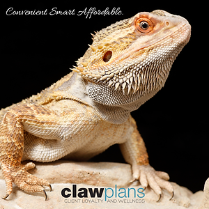 Reptile CLAW_FB POST-02.png