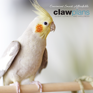 Avian CLAW_FB POST-01.png