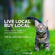 Local_Cat_Evergreen_FBPost_v4.png