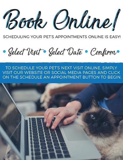 Flyer--Online Booking Feline2 feline 6.2