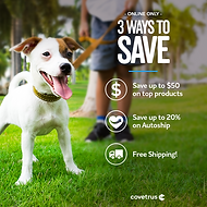 Three_ways_to_save_dog.png