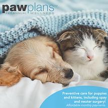 Paw Plan Web Tool Kit tm_Fb post cat dog