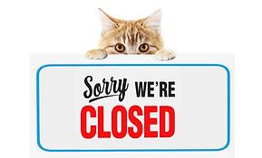 Temp Closure Web_Ally copy 5.png