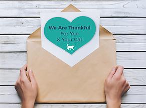 Gratitude Cards cat 8.31.2020.png