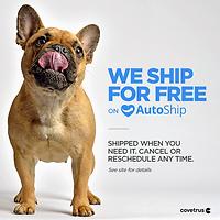 Companion_AutoShip_FreeShipV3.png