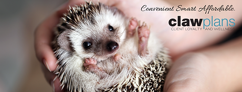 Hedgehog Sugarglider CLAW_FB COVER.png