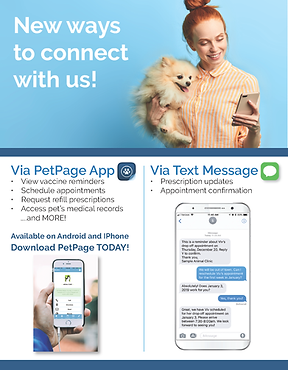Pet Page Flyers 1.png