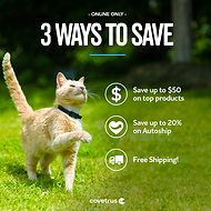 Three_ways_to_save_feline.png