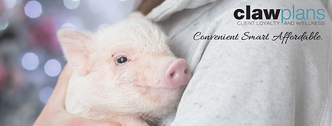 Minipig CLAW_FB COVER.png