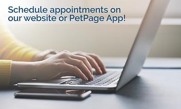 schedule appts on app 8.24 v1.png