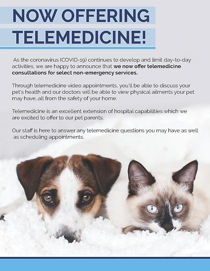 Telemedicine Flyer_2.png