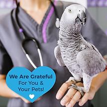 Grateful FB post avian .png