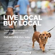 Local_Dog_Evergreen_FBPost_v2.png