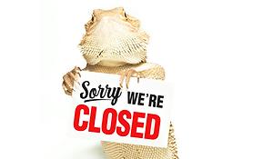 Temp Closure Web_Ally copy 4.png