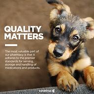 Quality_Dog_Evergreen_FBPost.png