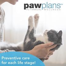 Paw Plan Web Tool Kit tm_Fb post cat-14.