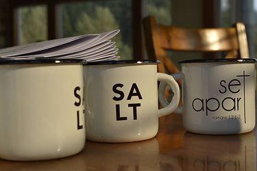 EM-SALT1.jpg