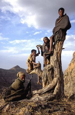 Villagers on tree stump