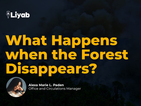 What Happens when the Forest Disappears?