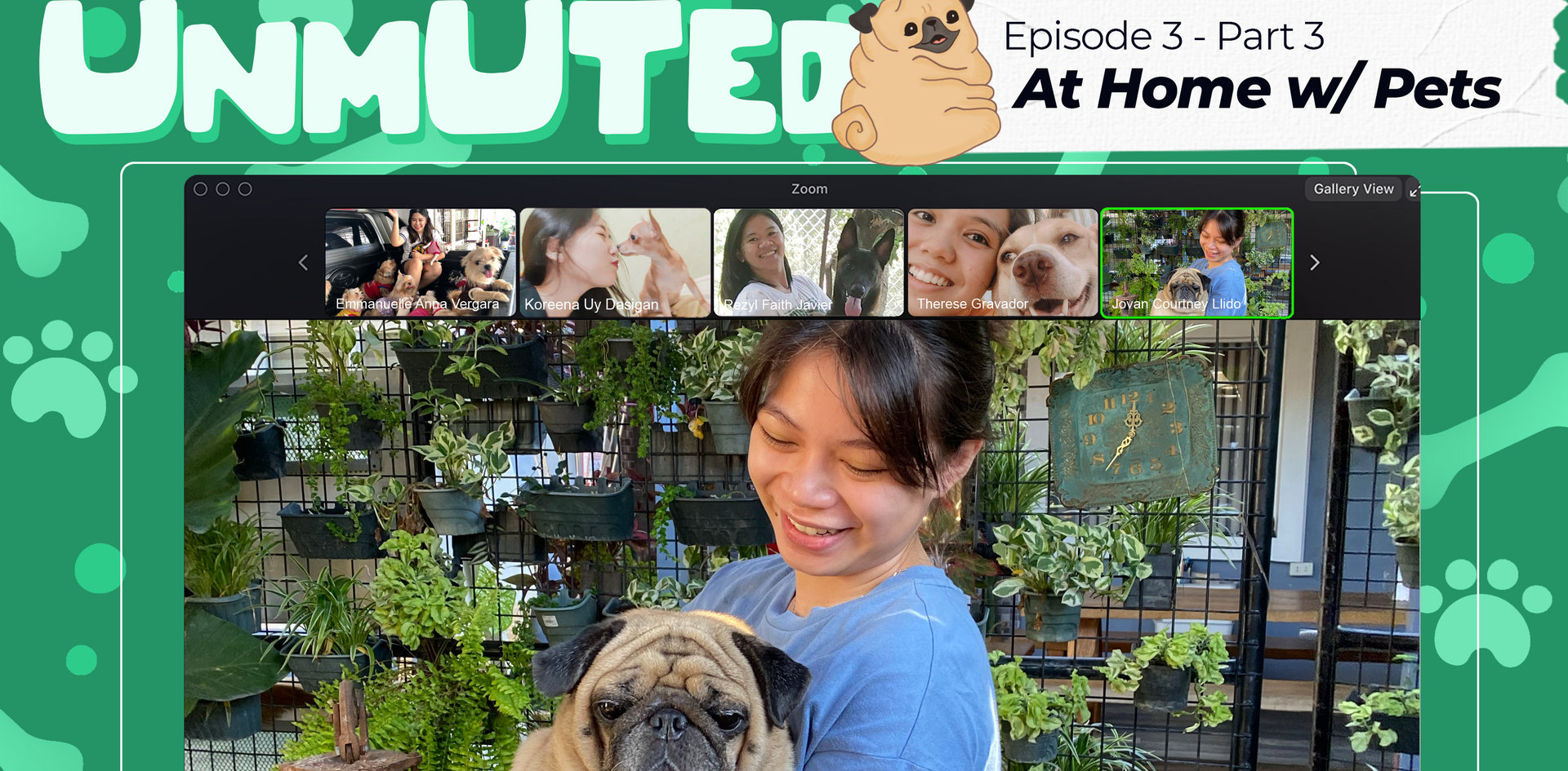 Episode 3.3 - At Home with Pets